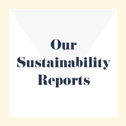 Our Sustainability Report 2016 (PDF_ 849KB)